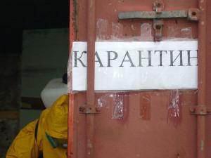Кузнецк закрыли на карантин
